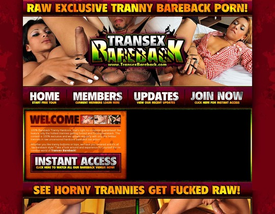 Transexbareback