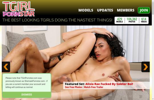 Shemale Pornstar